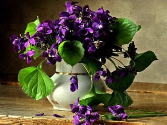 delightful-violets-flowers-still-life-table-vase-violets